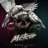 Meteor: White Crows / Voyage Into Fear