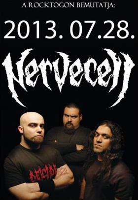 0729nervecell